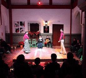Seville Tapas & Flamenco Tour, City Tours in Sevilla, Spain