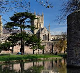 Sightseeing Tours: Glastonbury and Wells