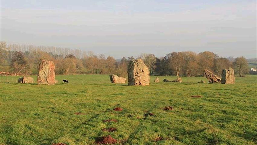 Glastonbury and wells - Tiqy, Sightseeing Tours: Glastonbury and Wells