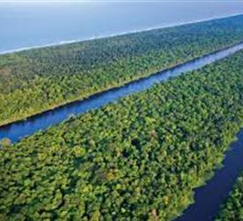 Tortuguero National Park One-Day Tour, Adventure Tours in Costa Rica