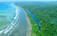 5, Tortuguero National Park One-Day Tour