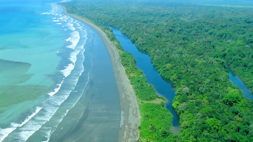 5, Tortuguero National Park One-Day Tour