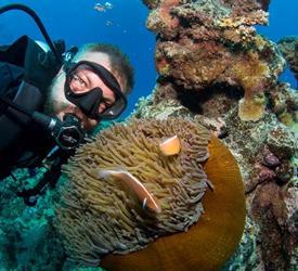 Snorkel in Cairns
