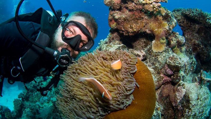 snorkeling in cairns man, Snorkel in Cairns