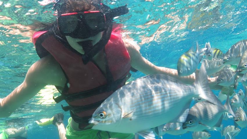 Snorkeling Varadero Tour, Snorkeling Varadero Tour