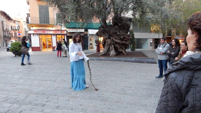 stoy of an old tree - tiqy, Stories, Illusions and Truths About Palma