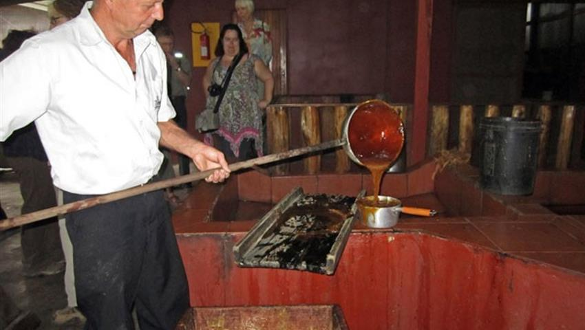 sucre, Sugarcane and Coffee 3-Hour Tour