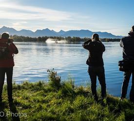 Safari Fotográfica al Atardecer, Experiencia De Vida Silvestre en Alaska, Estados Unidos