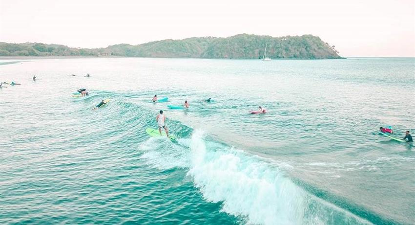 They are waiting for you, Surf Classes in Playa Venao