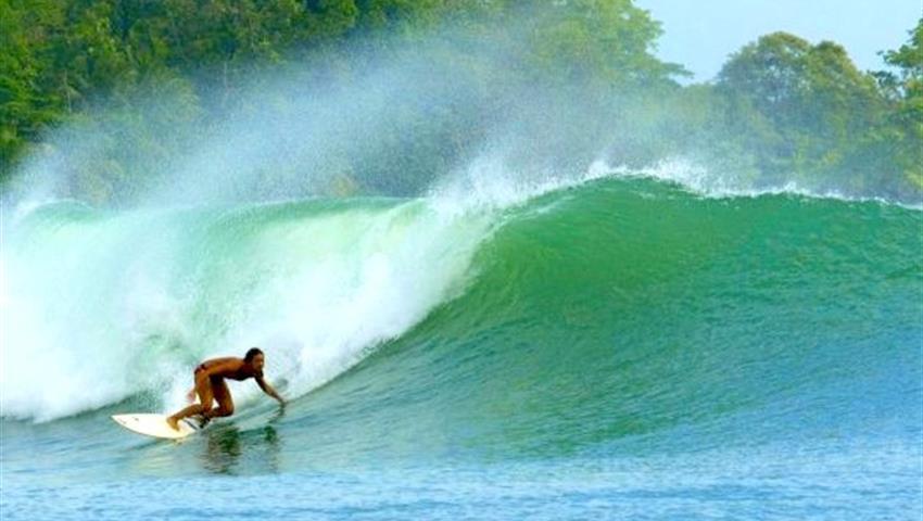 The Famous Silverback Waves of Bocas del Toro, Clases de Surf en Bocas del Toro