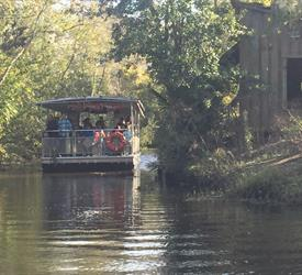 Swamp Boat Tour, Water Activities in United States