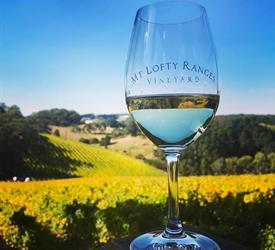 Swan Valley Tour, Wine Tours in Australia