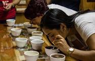1, Tasting Coffee Tour
