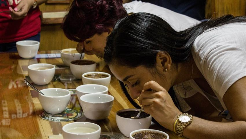 1, Tasting Coffee Tour