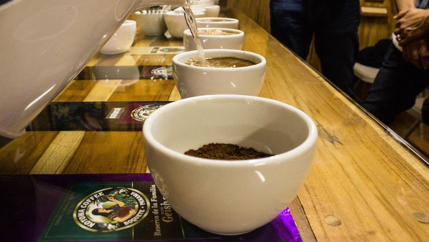 2, Tasting Coffee Tour