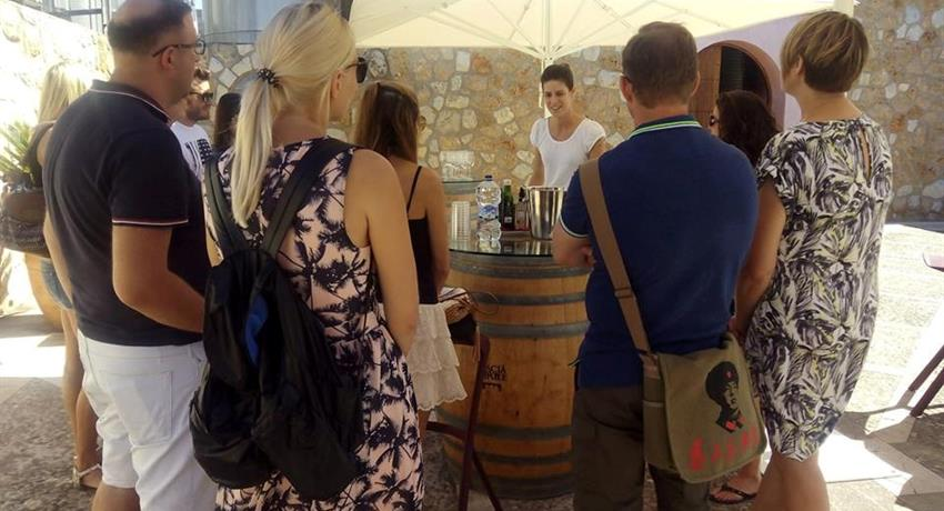 tasting wine and food mallorca tour, Degustando Vinos y Comida
