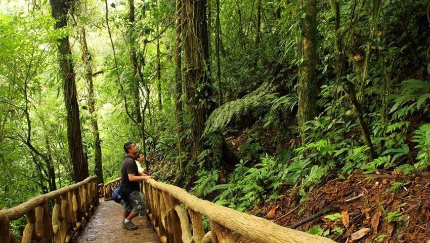 Hiking, Tenorio Volcano Day Hike