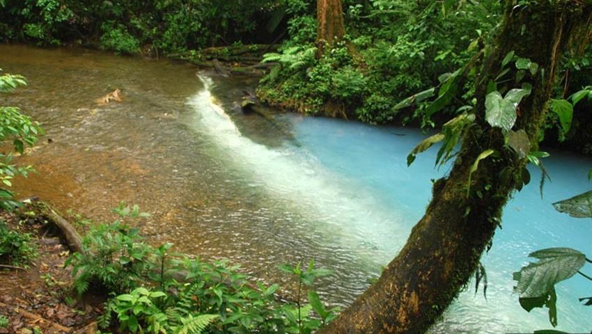 Rio celeste teñidores, Tenorio Volcano Day Hike