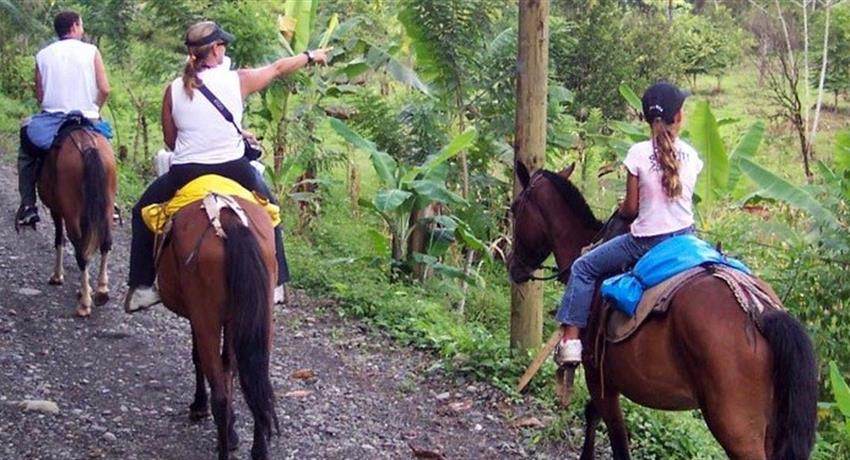 1, Horse Riding in Mountains Manuel Antonio