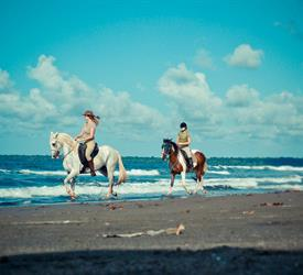 Horse Riding On The Beach, Adventure Tours in Costa Rica
