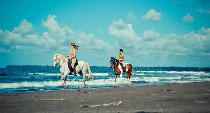 1, Horse Riding On The Beach