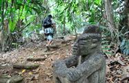 Jungle adventure hike, Aventura en la Jungla