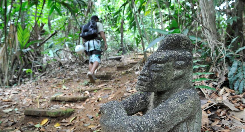 Jungle adventure hike, The Jungle Adventure