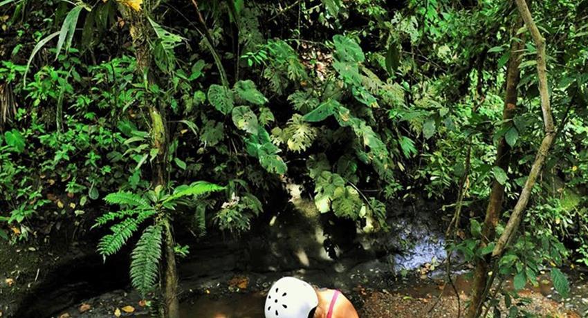 Jungle waterfall rappel, The Jungle Adventure