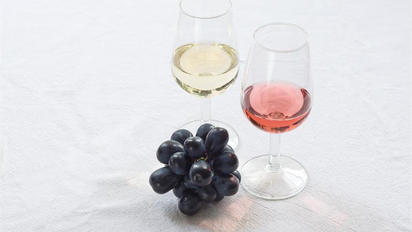The brighton wine rebellion 2, The Brighton Wine Rebellion Tour