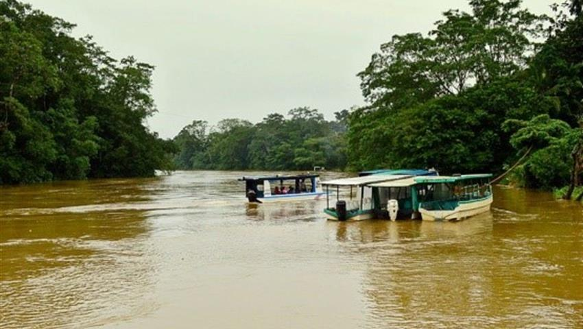 boat tour in Sarapiquí River, The Kingdom of Rainforests and Tropical Fauna