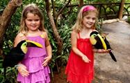 kids playing with tucans, El Reino de los Bosques Lluviosos y su Fauna Tropical