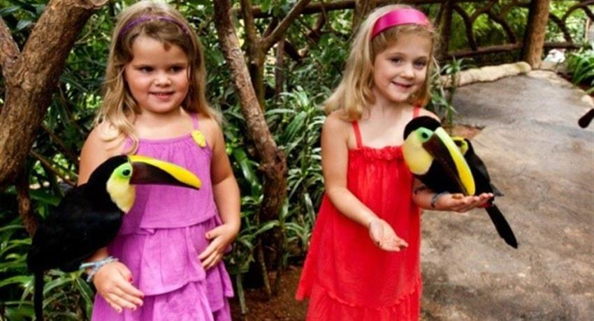 kids playing with tucans, The Kingdom of Rainforests and Tropical Fauna