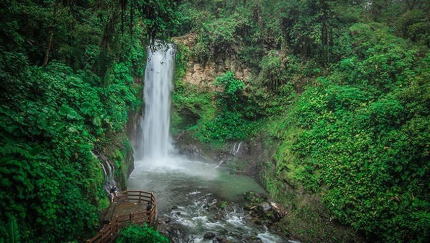 View of the waterfall, The Kingdom of Rainforests and Tropical Fauna