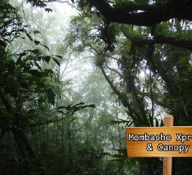 Mombacho Xpress and Canopy Tour