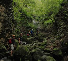 Paso Tlahuica Canyoning Tour, Adventure Tours in Mexico