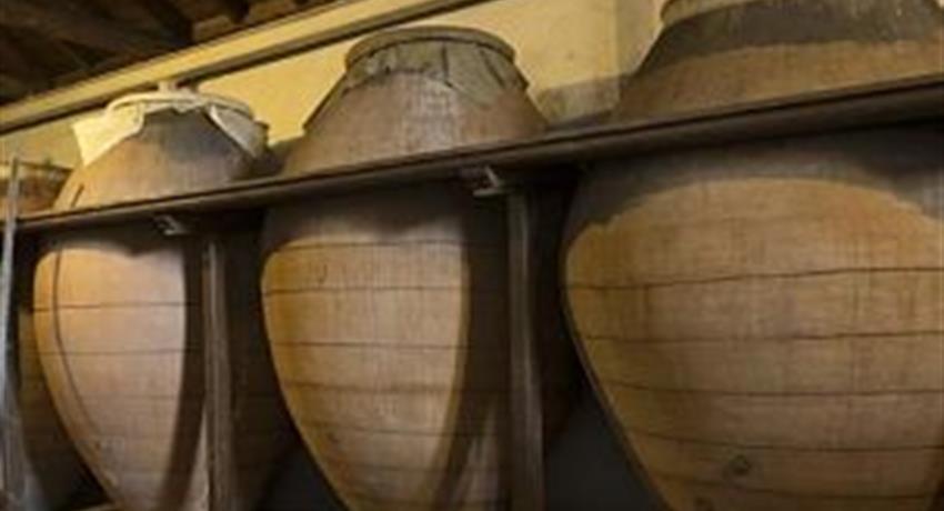 Centenary cava of wine - tiqy, Toledo and Centenary Winery