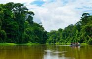 Boat tour through rainforest, Tortuguero National Park