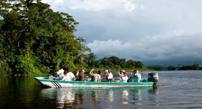 Boat tour in group of 10 people, Tortuguero National Park
