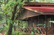 Beautiful house in the woods, Tortuguero National Park