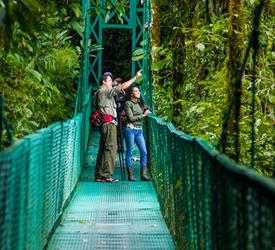 Treetop Walkways Suspension Bridges , Adventure Tours in Costa Rica