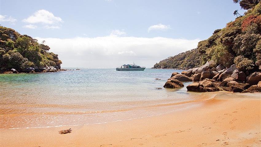 beach tiqy, Ulva Island Explorer