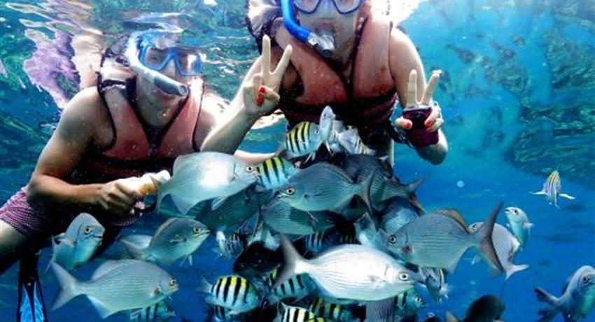 1, Hookah Snorkeling Bay of Pigs Caribbean Sea