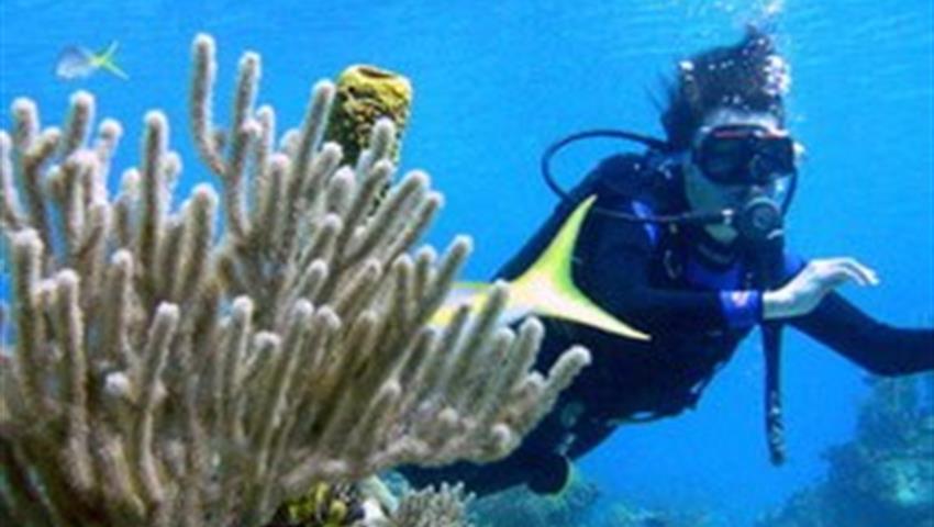 2, Hookah Snorkeling Bay of Pigs Caribbean Sea