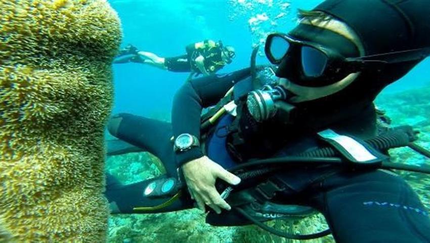 3, Hookah Snorkeling Bay of Pigs Caribbean Sea