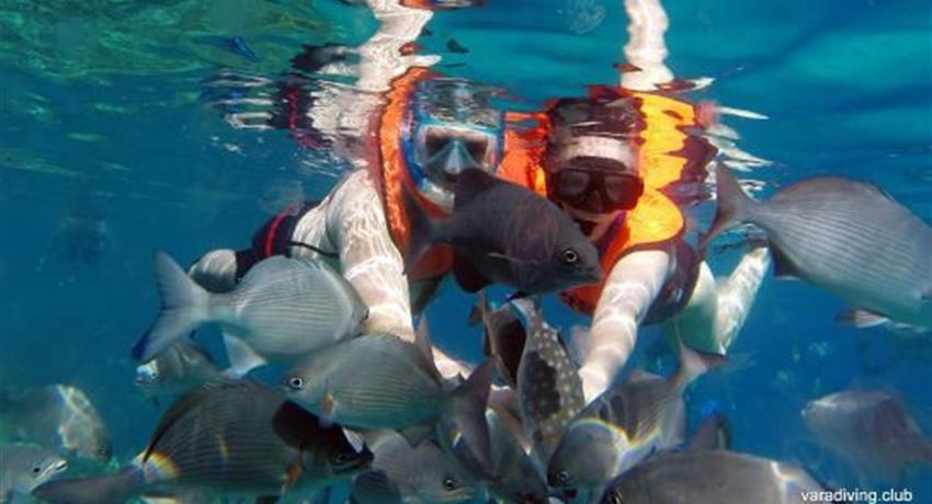 4, Hookah Snorkeling Bay of Pigs Caribbean Sea