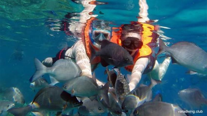 4, Hookah Snorkeling Bay of Pigs Caribbean Sea