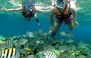snorkelling coral beach, Snorkeling the Coral Beach and Saturn Cave