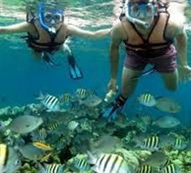 Snorkeling the Coral Beach and Saturn Cave