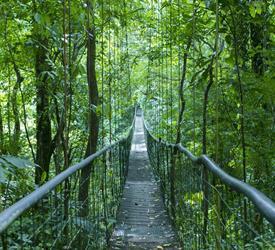 Villa Lapas Sky Way Tour, Tours De Aventura en Jaco, Costa Rica