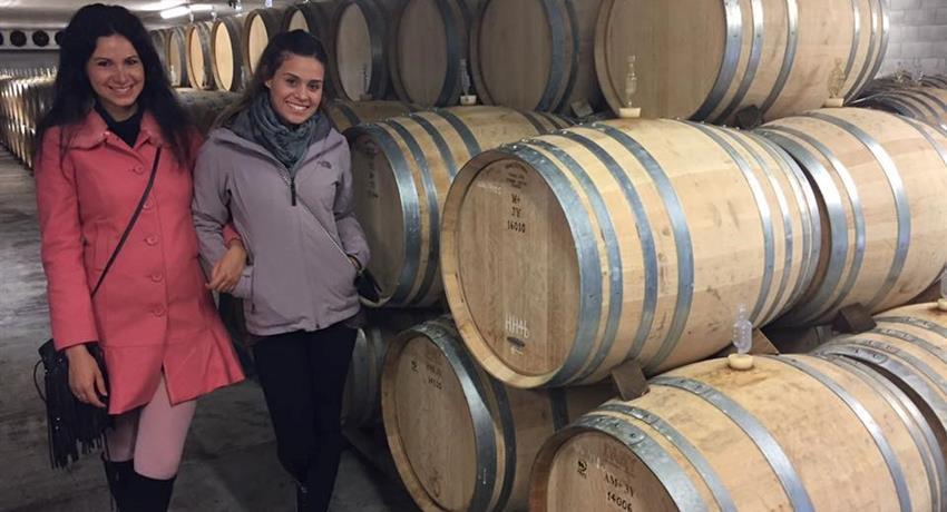 wine cellar tiqy, Vineyards Honey and Black Sand Beaches